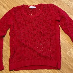 Barely worn Loft v neck sweater